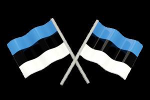 Estonca Tıbbi Tercüme