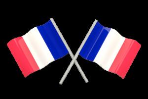 Fransızca Acil Tercüme
