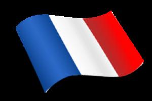 Fransızca Noter Tasdikli Tercüme
